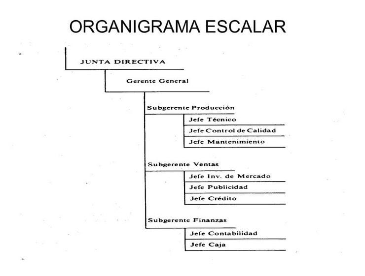 Organigrama Escalar Web Y Empresas