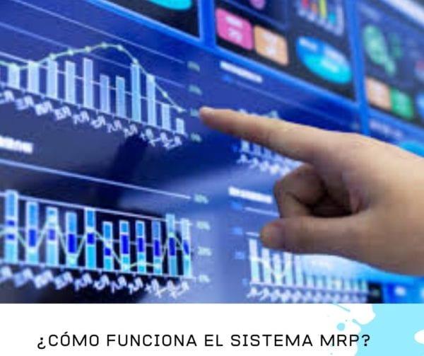 FUNCION DEL MRP